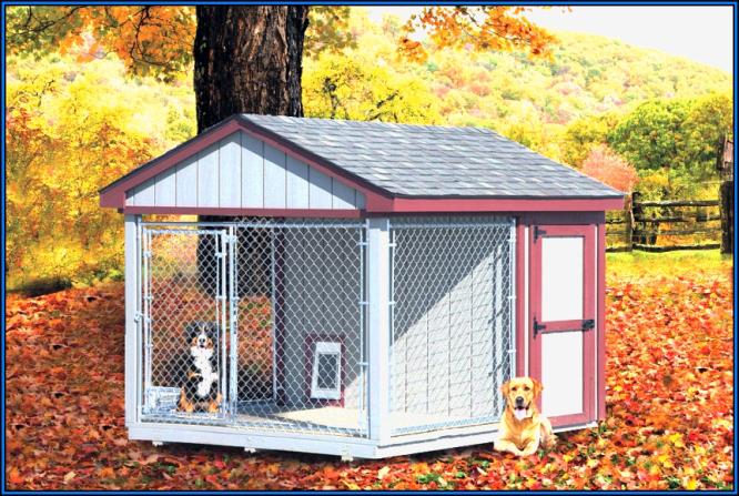 outdoor-dog-kennel-ideas